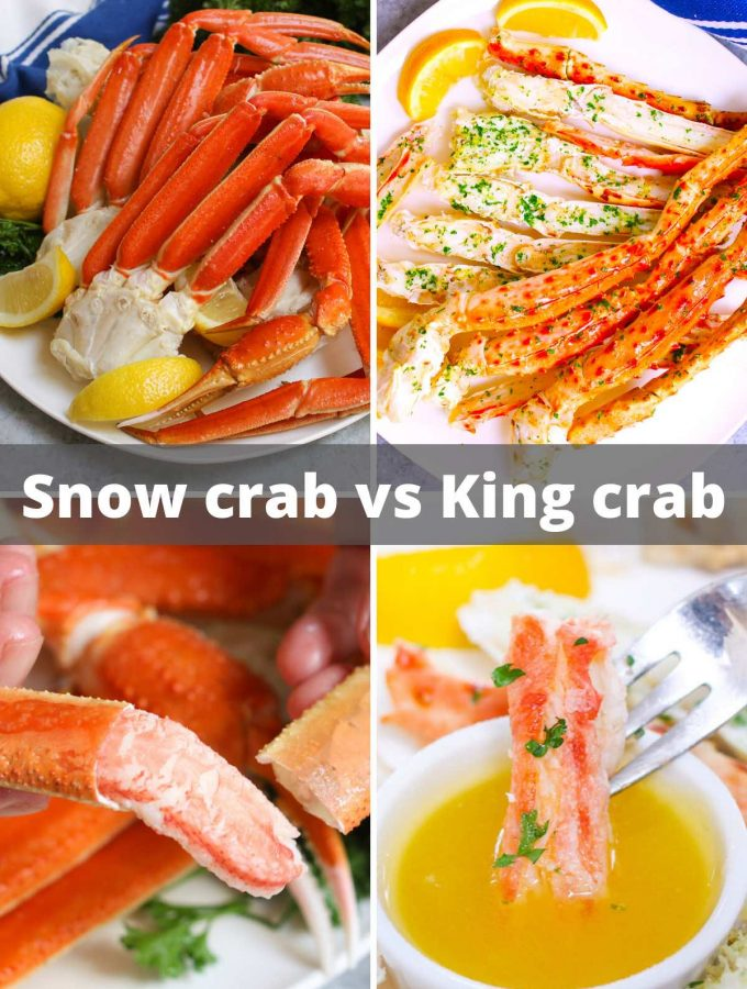 Snow Crab vs King Crab – explore the differences between the two popular crabs! Whether you're ordering in a restaurant or cook your own at home, you'll find everything you need with this complete guide.