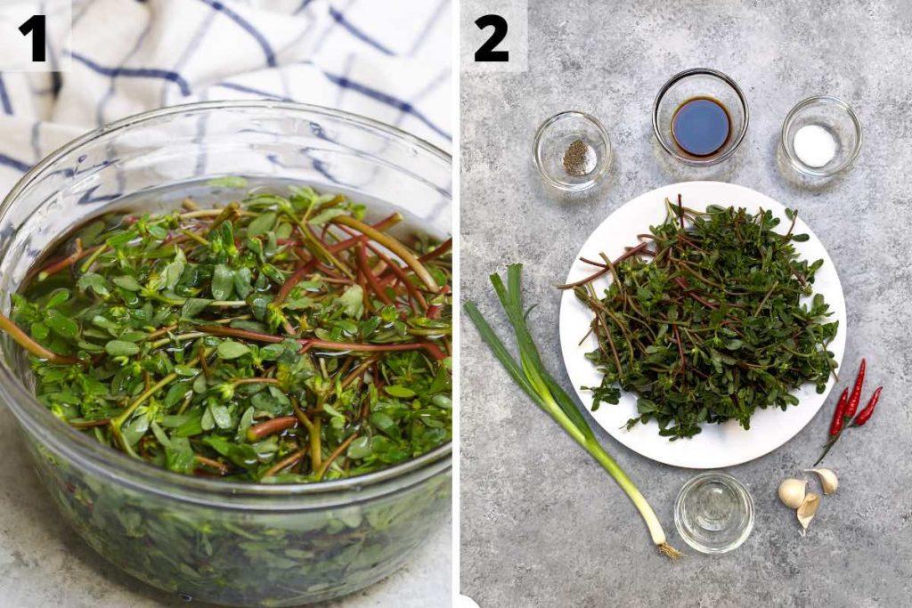 Purslane Salad recipe: step 1 an 2 photos.