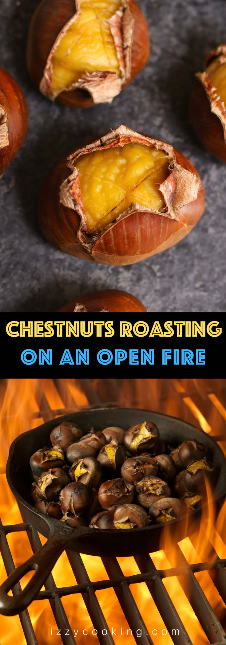 "If you are familiar with the Christmas song ""Chestnuts roasting on an open fire"", then try making this special treat at home this year! Roasted Chestnuts are a great holiday appetizer and a healthy snack that's sweet with a nutty flavor."