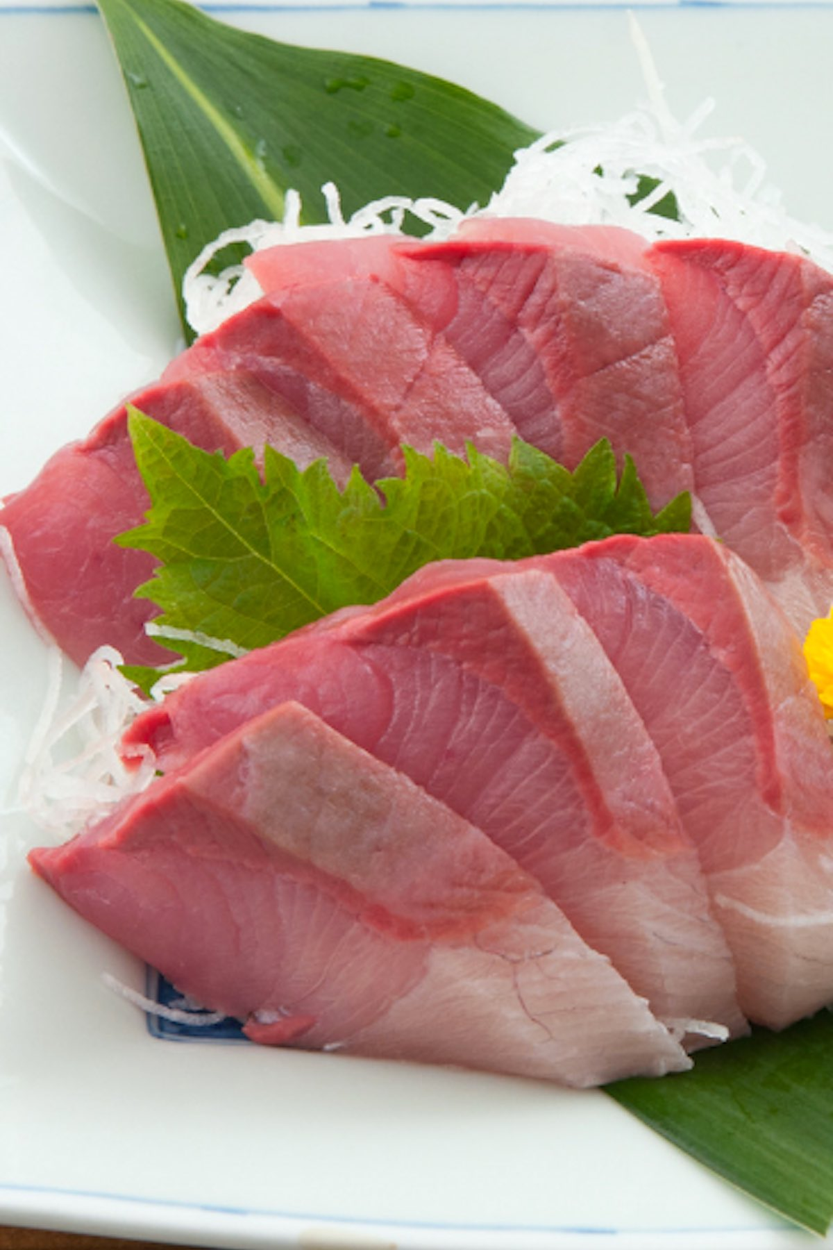 Yellowtail Sashimi made with delicious and buttery Hamachi fish! It's so much cheaper than the Japanese restaurants, and incredibly easy to make at home. I'll share with you how to cut yellowtail for sashimi, and make both the traditional and Nobu new style sashimi. #YellowtailSashimi #HamachiSashimi