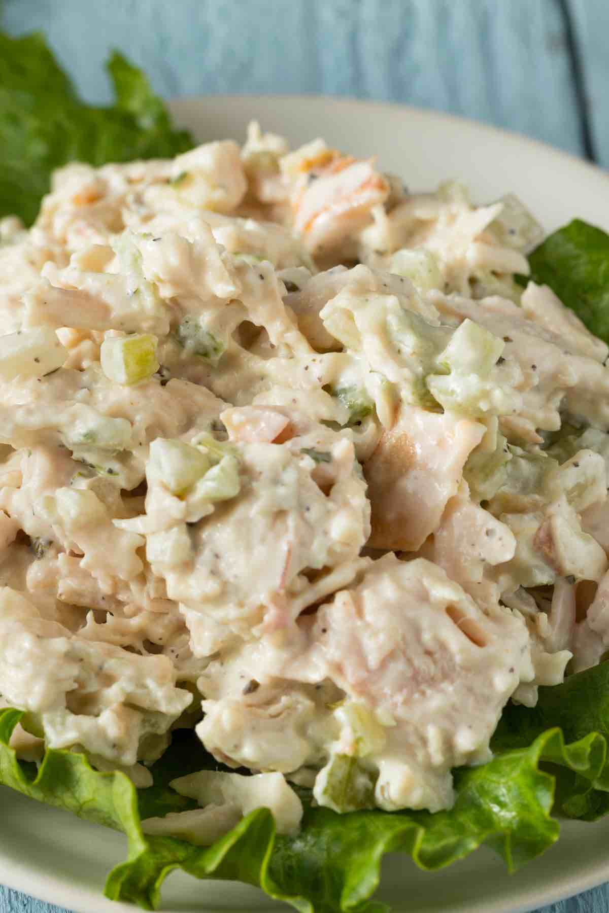 When you have a leftover chicken salad from the picnics or BBQs, you may wonder: Can You Freeze Chicken Salad? This summer salad is a great way to feed many people with few ingredients. But if your large batch doesn't get eaten, can it be frozen?