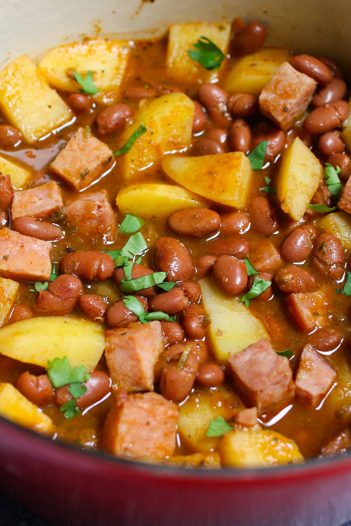 Puerto Rican Rice and Beans are saucy, flavorful, and comforting. Delicious Goya red beans are simmered in sofrito, tomato and sazon sauce! This Puerto Rican staple is also known as Habichuelas or stewed beans, and leftovers are perfect for meal prep.